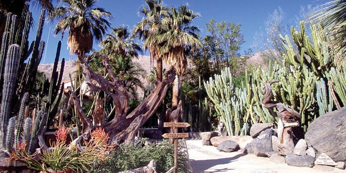 Morton Gardens